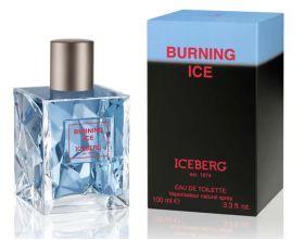 Iceberg Burning Ice Pour Homme - Best-Parfum