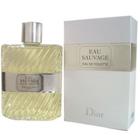 Christian Dior Eau Sauvage For Men - Best-Parfum
